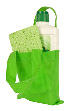 Green bag with cleaning products inside.